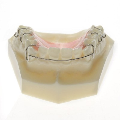 Modèle Orthodontie Maintenance de traitement M3007